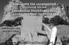 Student Using the Sensational Blackboard